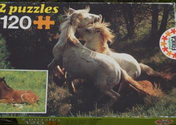 2 stk heste puslespil med vilde heste. 240 brikker i alt.